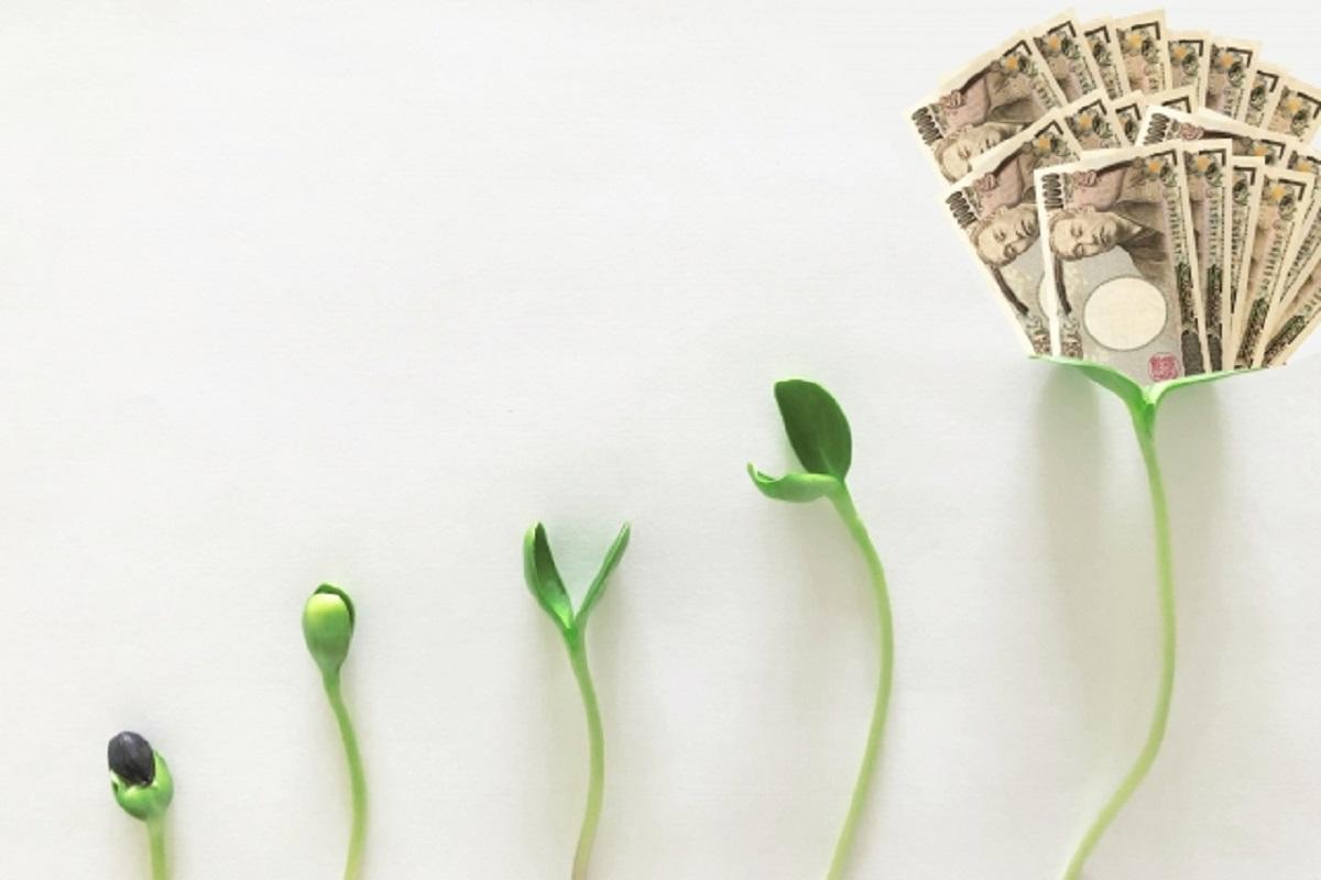 成長すると大金を得られるイメージ画像